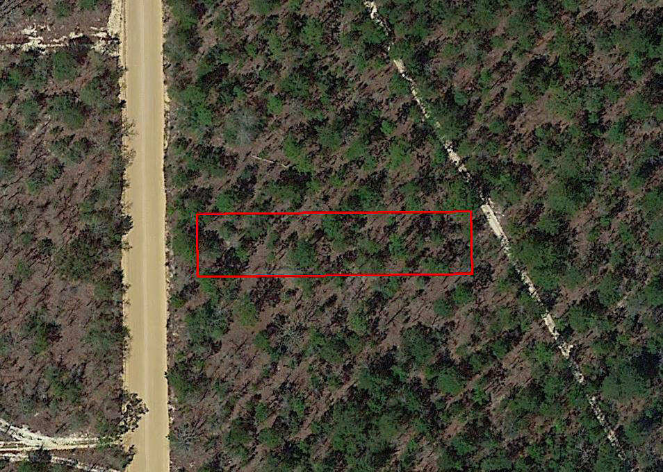 Florida Investment Property in Developing Area - Image 1