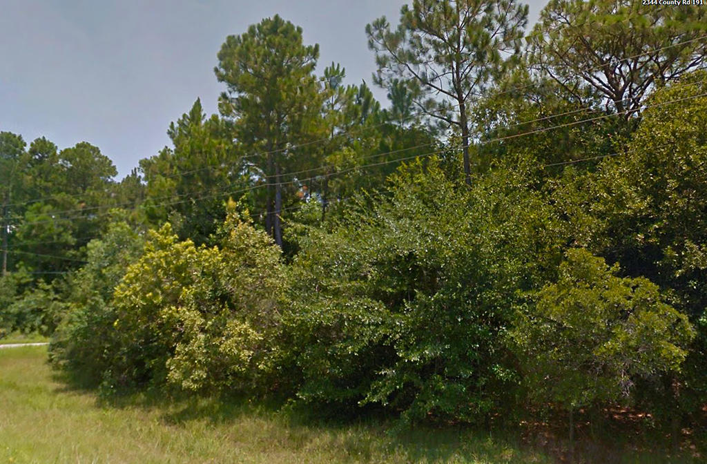 Half Acre Residential Lot in Milton Florida - Image 6