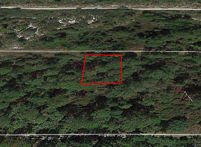 Private Residential Lot in Central Florida - Image 2