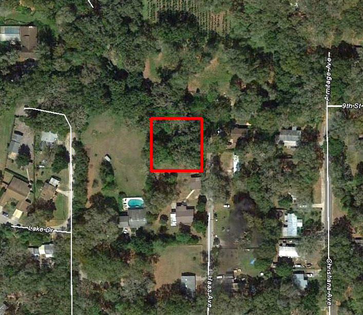 Large Lot on Paved Road in Apopka - Image 1