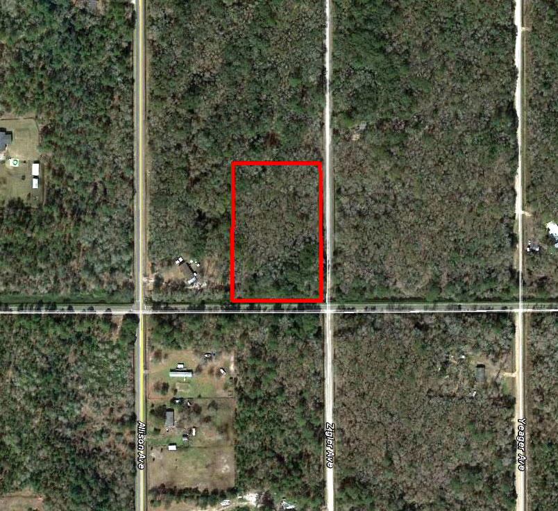 Large Acreage in Central Florida - Image 1