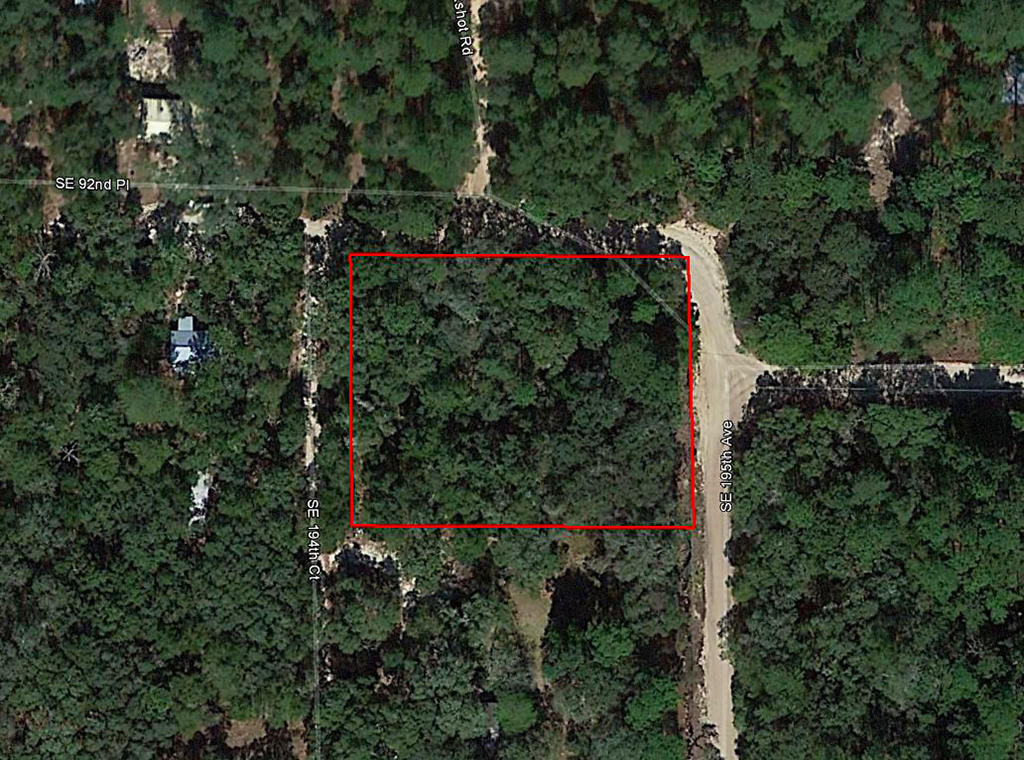 Residential Property Within the Ocala National Forest - Image 1