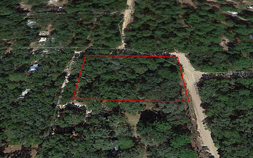 Residential Property Within the Ocala National Forest - Image 2