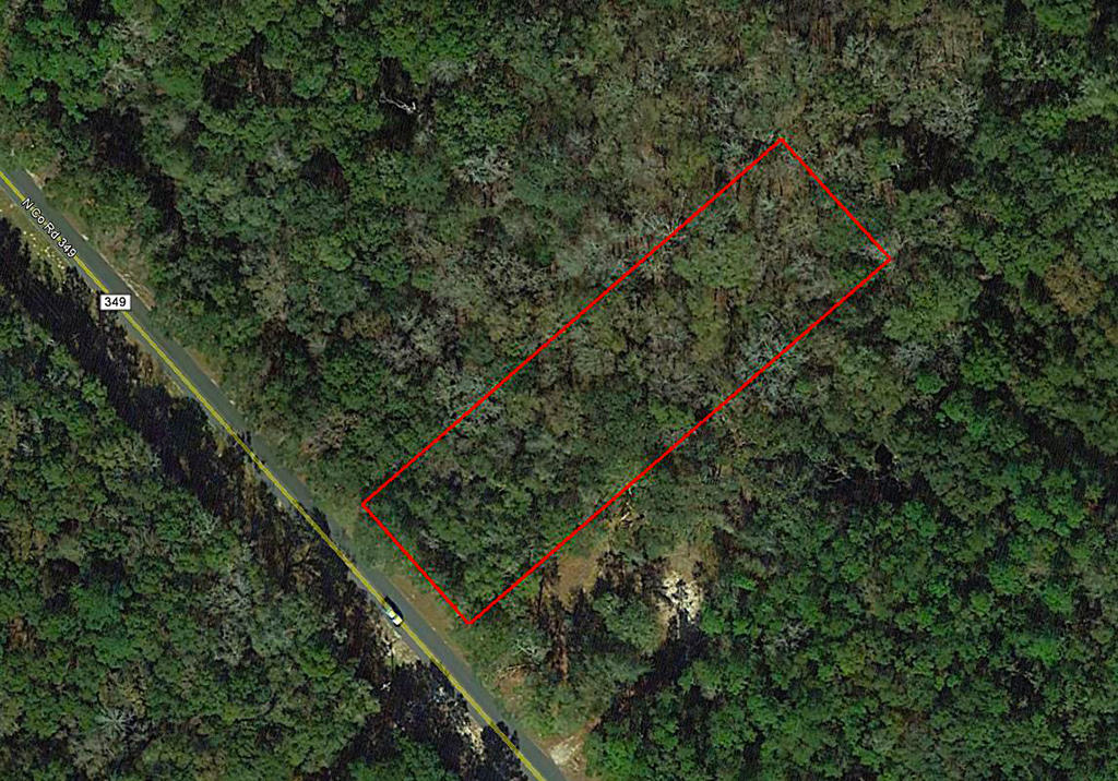 One-acre parcel near the Suwannee River - Image 1