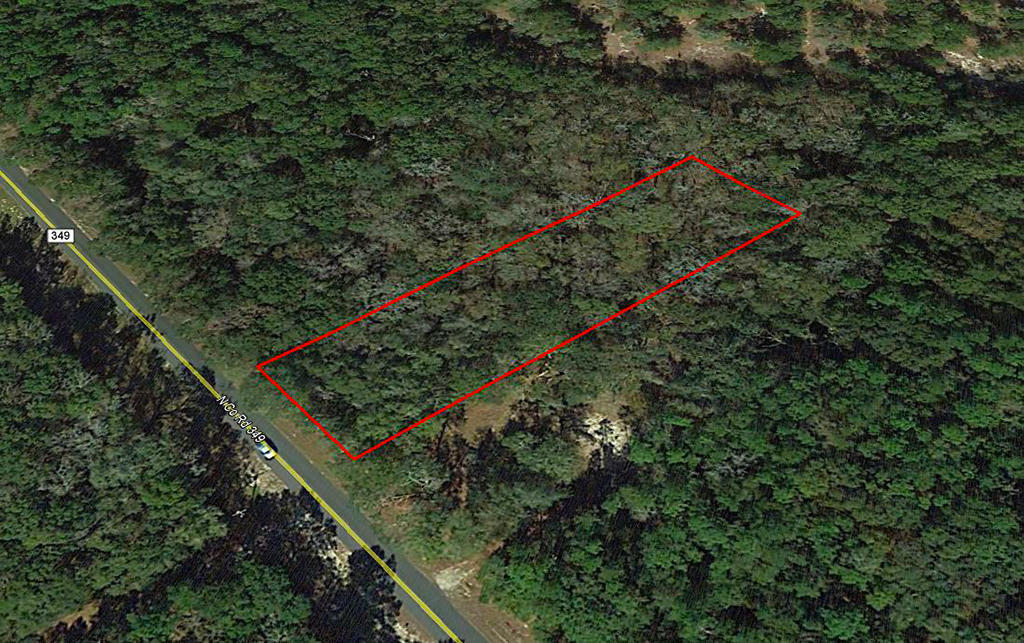 One-acre parcel near the Suwannee River - Image 2