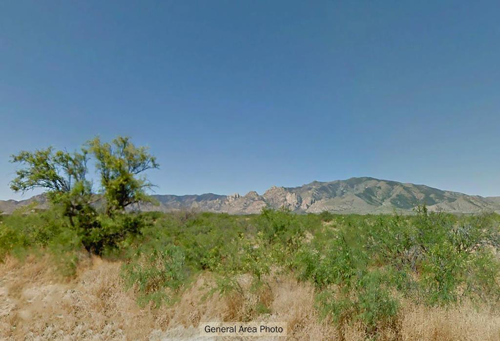 Nearly an Acre Rural lot Between Cochise and Sunsites Arizona - Image 4