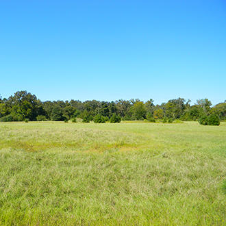 Gorgeous Acre Property in Eastern Texas - Image 0