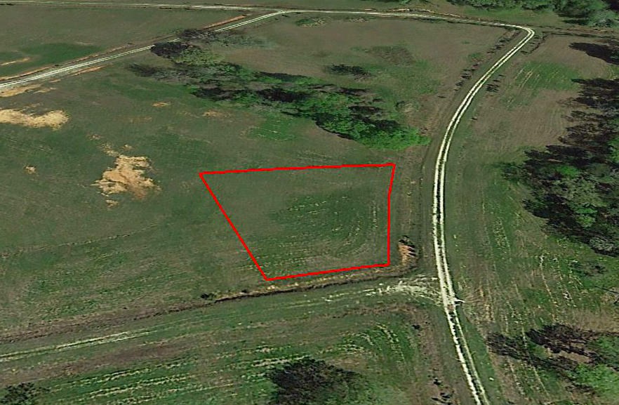 Half Acre Texas Lot in Trinity Plantation - Image 3
