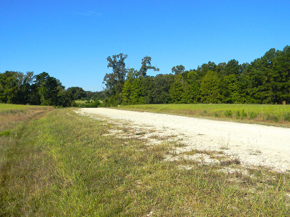 Half of an Acre in Exclusive Texas Community - Image 3