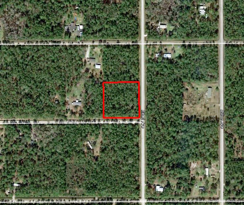 Rural North Eastern Florida Acreage - Image 1