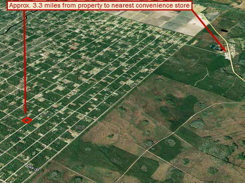 Rural North Eastern Florida Acreage - Image 2