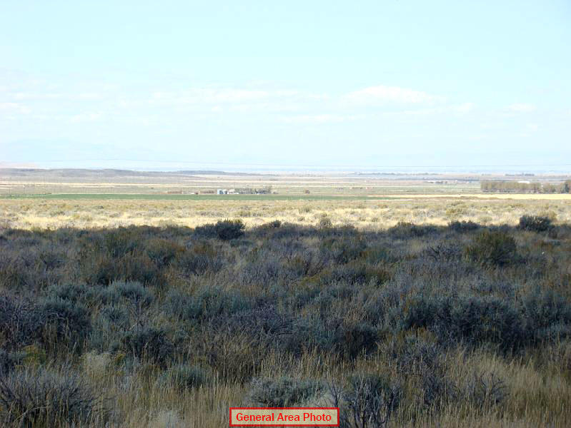 Beautiful Five Acres in Southern Colorado - Image 3