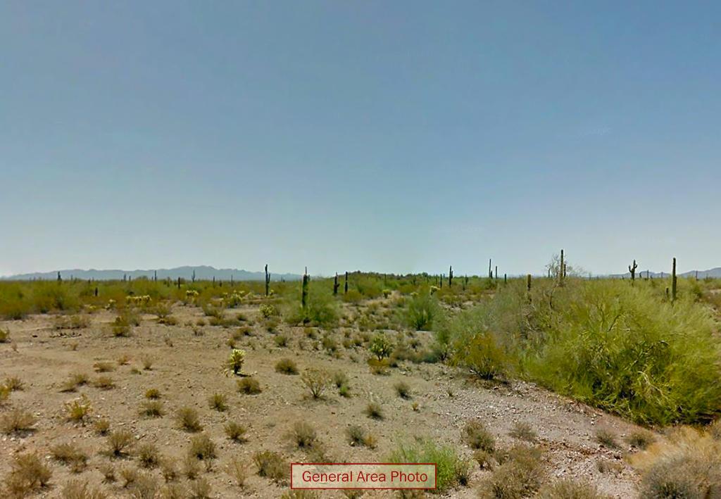 Four Plus Acres in Serene Desert Setting - Image 4