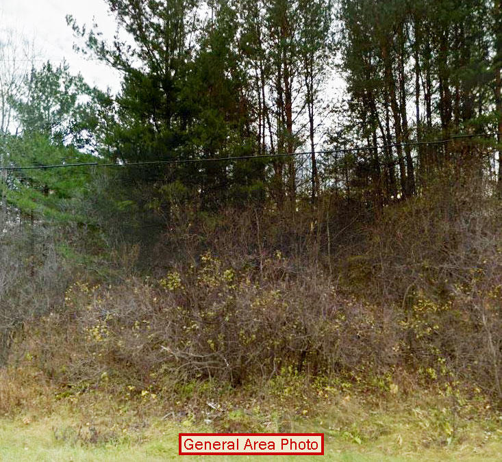 Half Acre town lot Near Ladysmith - Image 4
