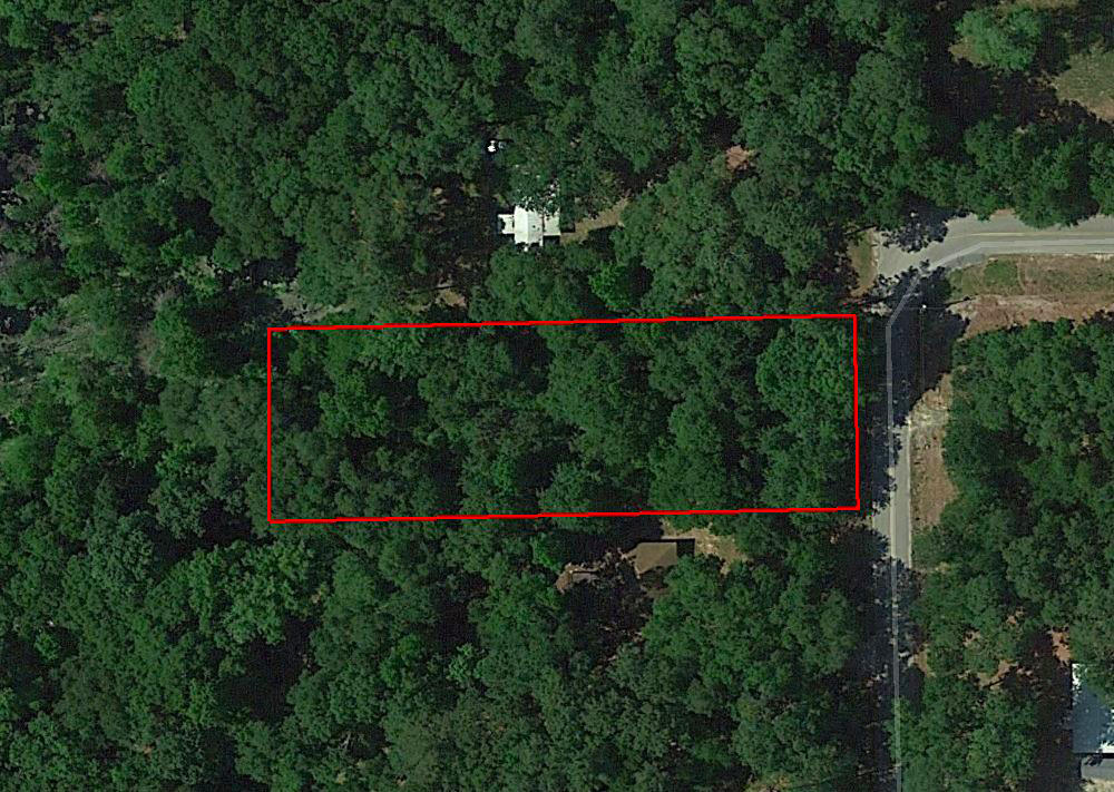 Beautiful Treed Lot with Paved Road Access - Image 2