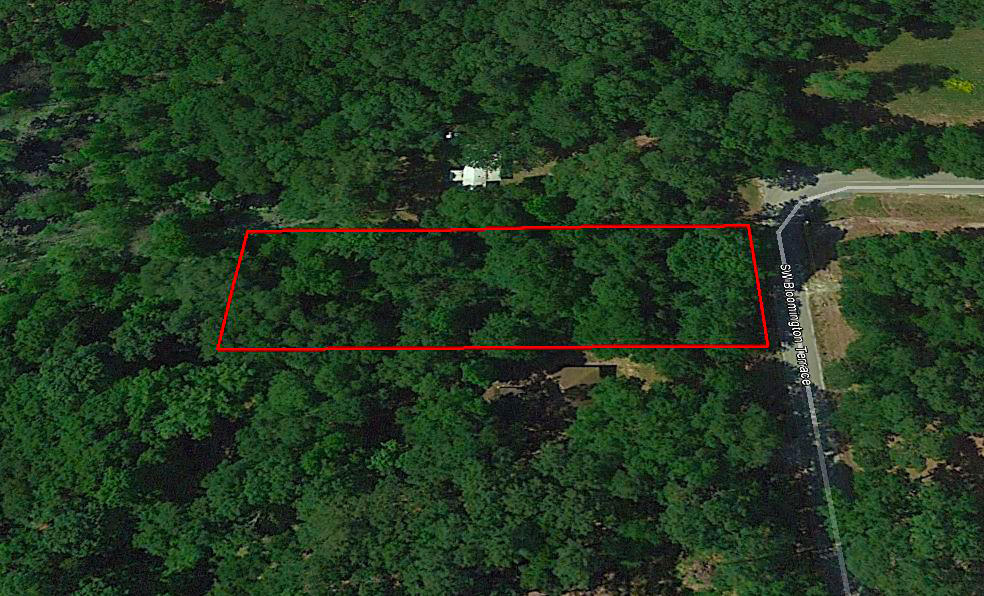 Beautiful Treed Lot with Paved Road Access - Image 3