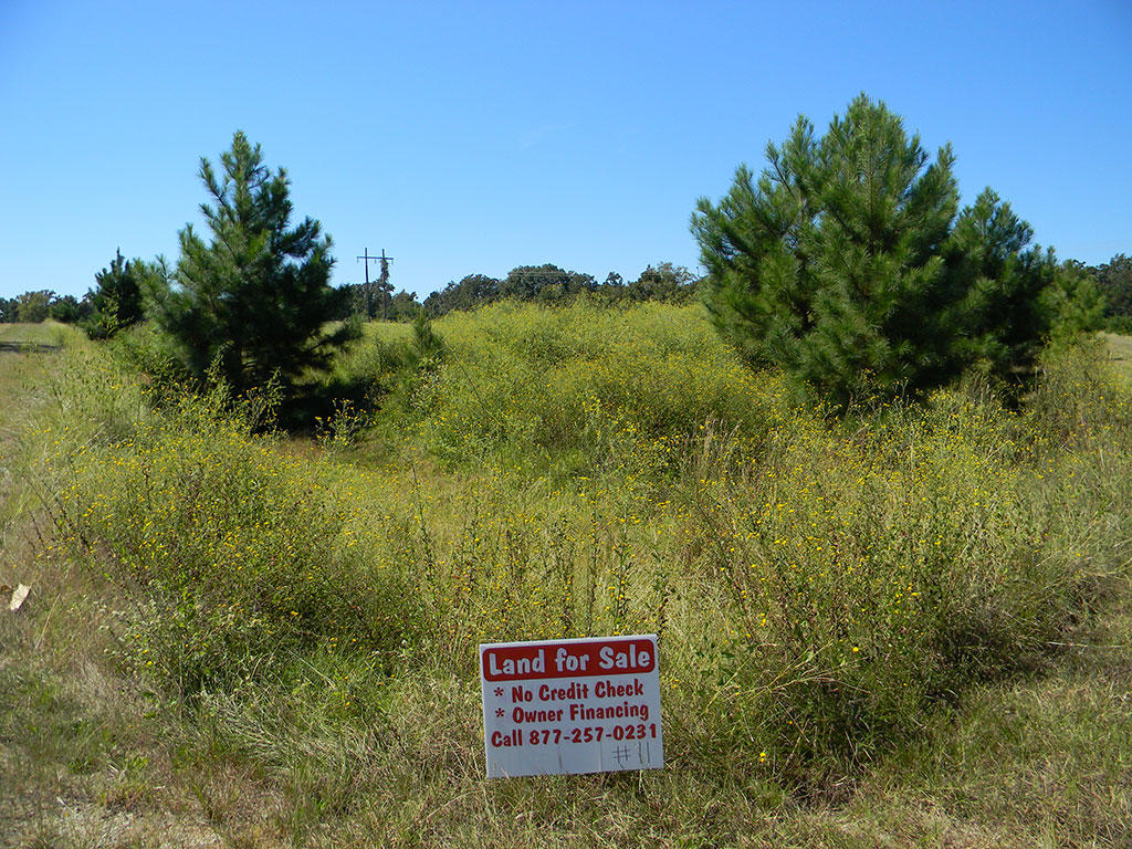 Large Corner Lot in Texas Countryside - Image 2
