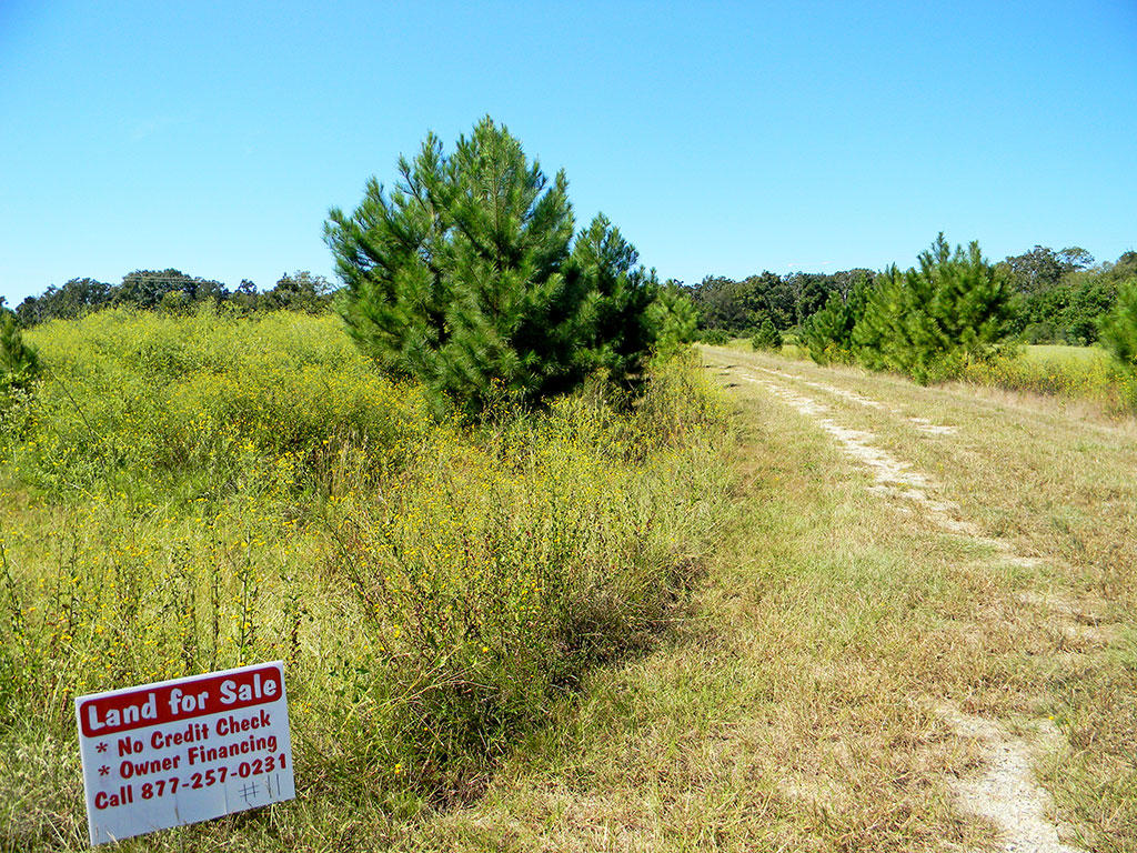 Large Corner Lot in Texas Countryside - Image 4