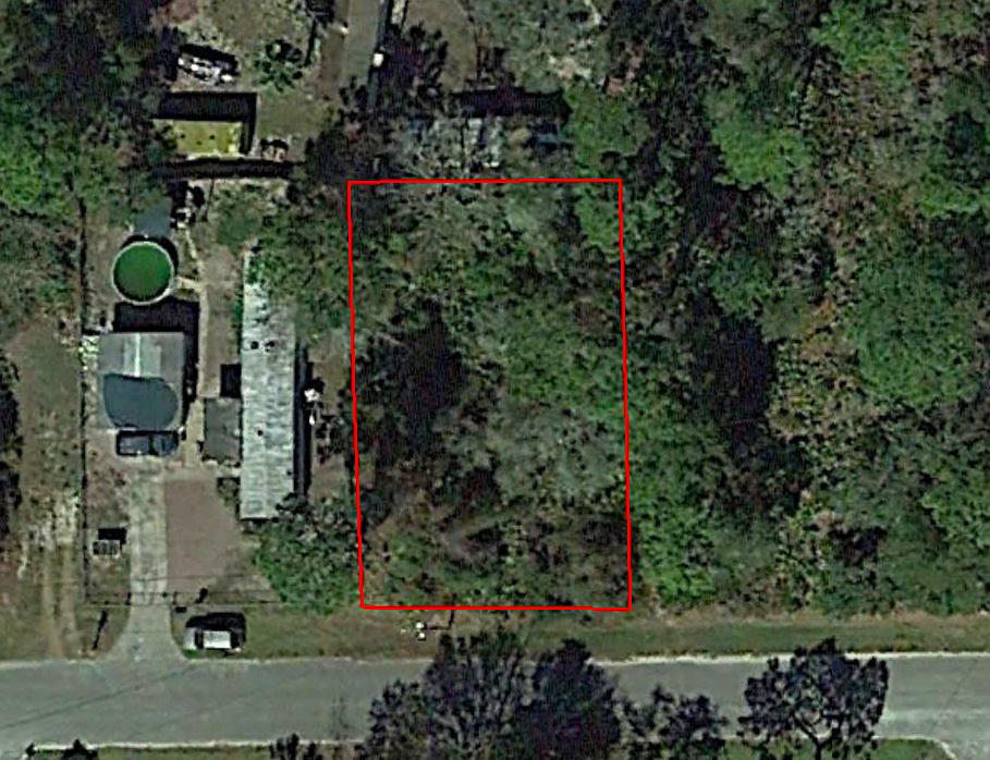 Great Treed Property in Pasco County - Image 1