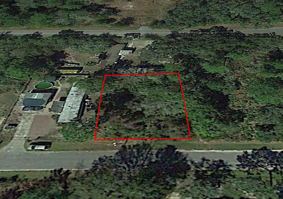 Great Treed Property in Pasco County - Image 2