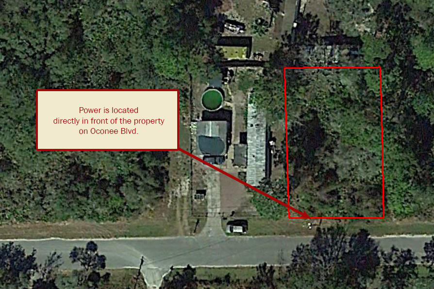 Great Treed Property in Pasco County - Image 3