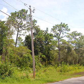 Great Treed Property in Pasco County - Image 0