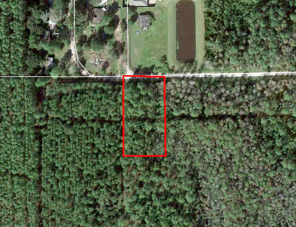 Over an Acre of Land 10 Miles West of the Saint Johns River - Image 2