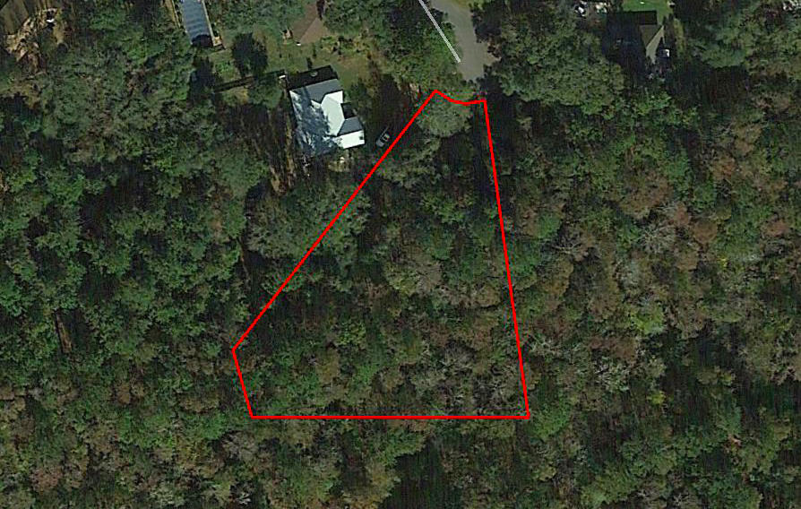 Treed Lot in Quiet Tallahassee Neighborhood - Image 2