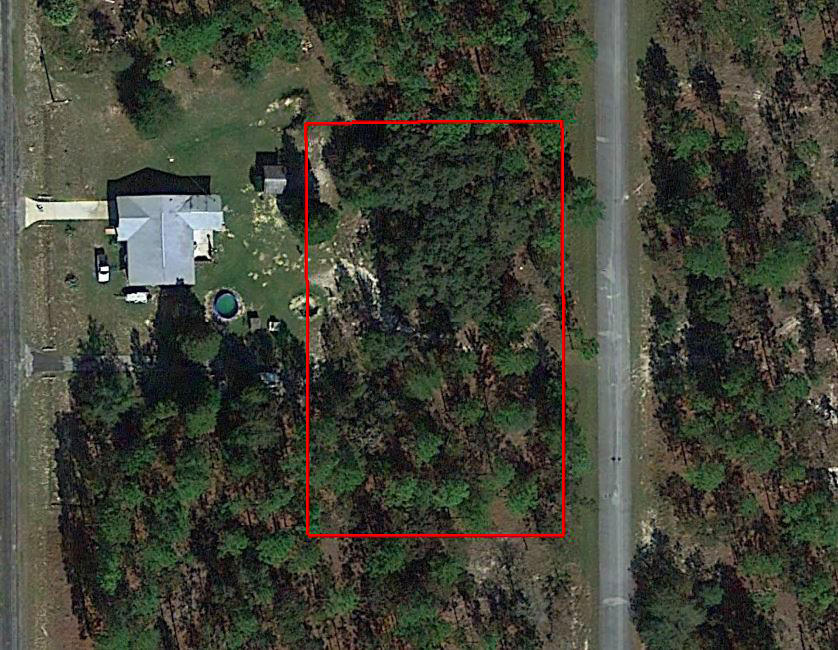 Three Combined Lots With Trees and Paved Road Access - Image 1