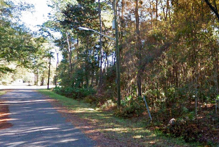 Treed Residential Parcel on Quiet Dead End Road - Image 4