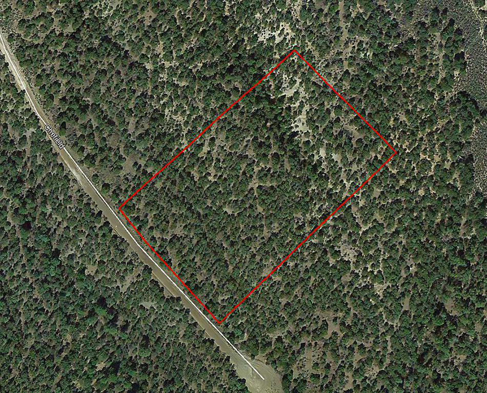 Enjoy Unspoiled Nature on Over Five Treed Acres - Image 1