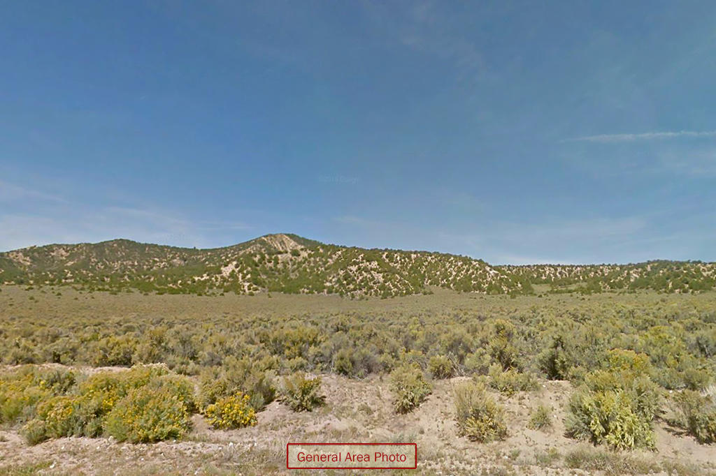 Treed Sanctuary on Colorado Mountainside - Image 4