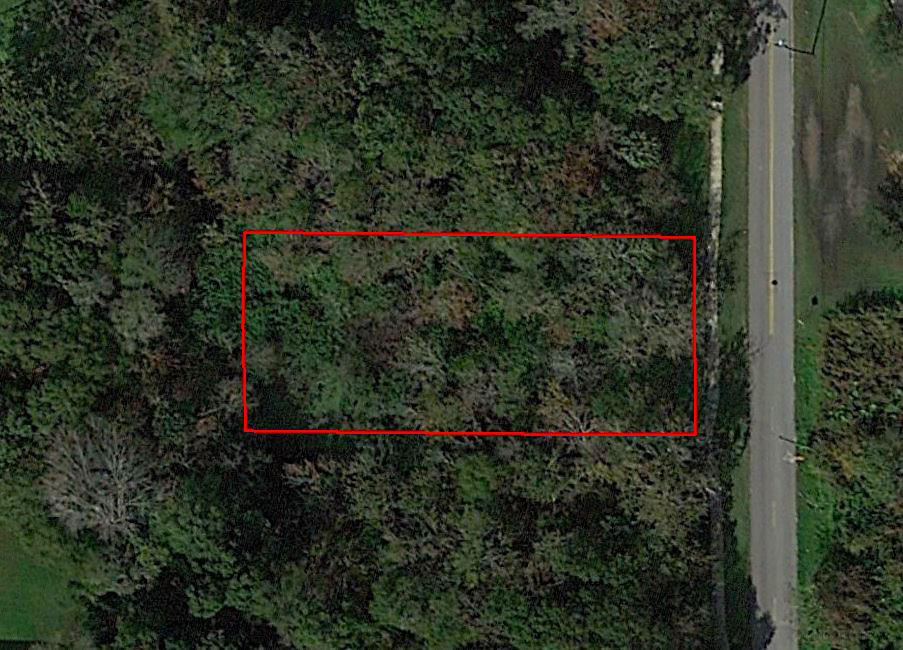 Dazzling Homesite Outside of Tampa - Image 2