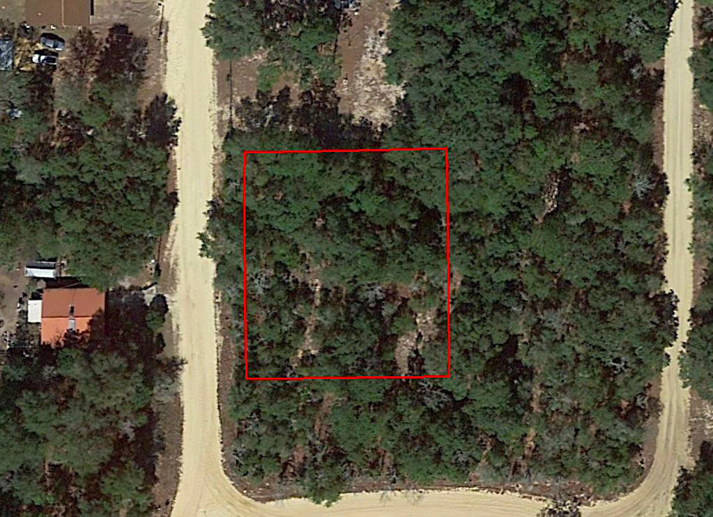 Almost One Half Acre Residential Property in Interlachen - Image 1