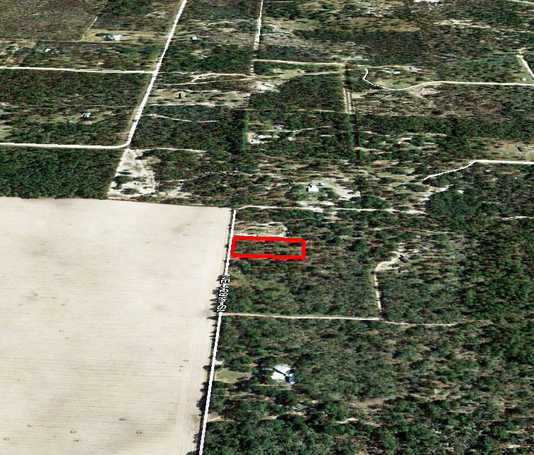 1.25 Acre Property About 6 miles North of Bronson - Image 2