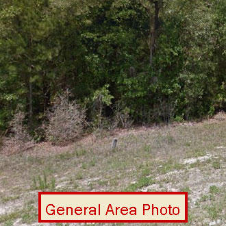 1.25 Acre Property About 6 miles North of Bronson - Image 0