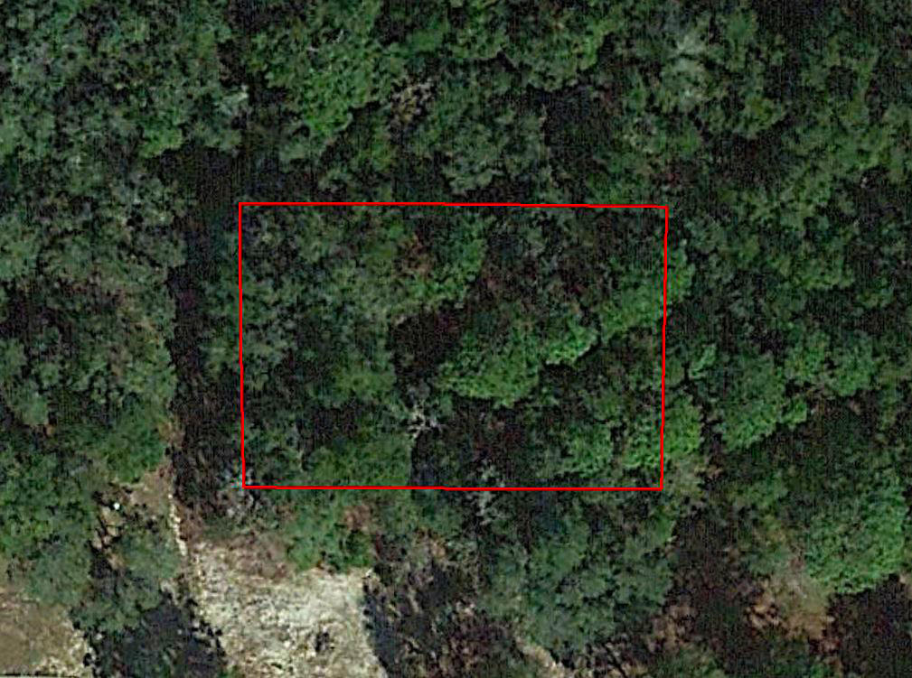 Treed property in a Quiet Neighborhood Close to Beaches - Image 1