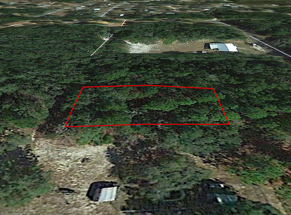 Treed property in a Quiet Neighborhood Close to Beaches - Image 2