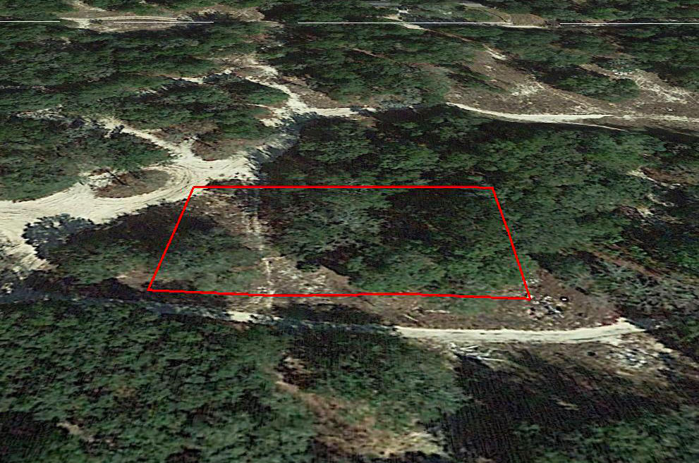 Almost Half an Acre in Developing Florida Community - Image 2