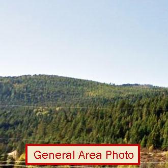 Large Northern Washington Acreage - Image 0