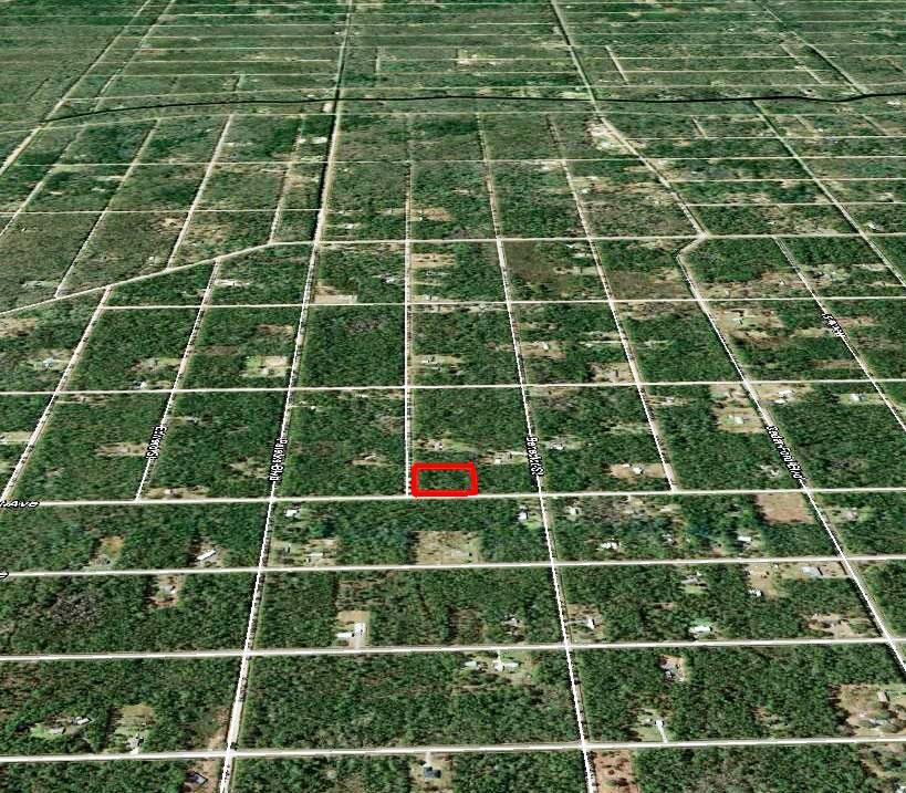 Rural North Eastern Florida Acreage - Image 4