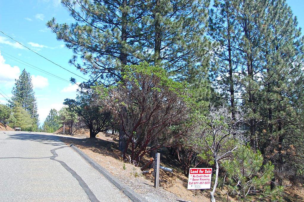 Hillside Residential Lot Near Pine Mountain Lake - Image 5