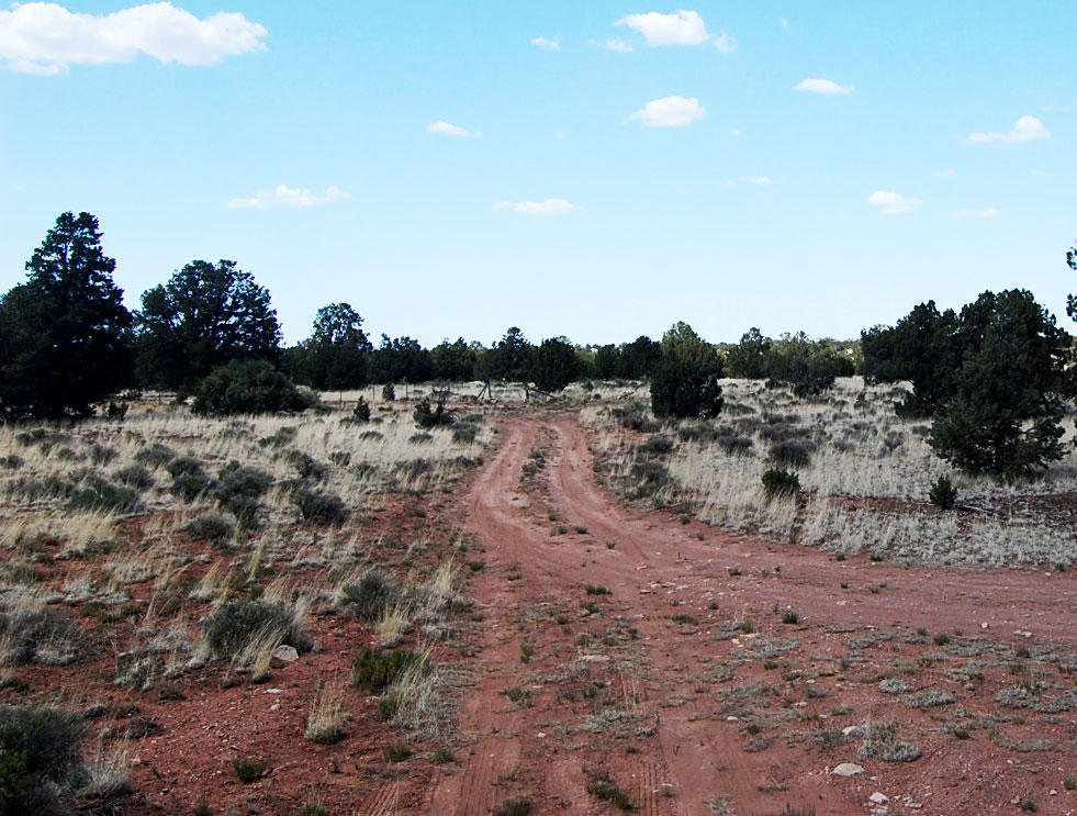 1+ Acre Gem Less than an hour from the Grand Canyon - Image 4