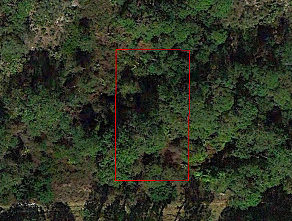 Treed lot near lakes and golf courses - Image 1