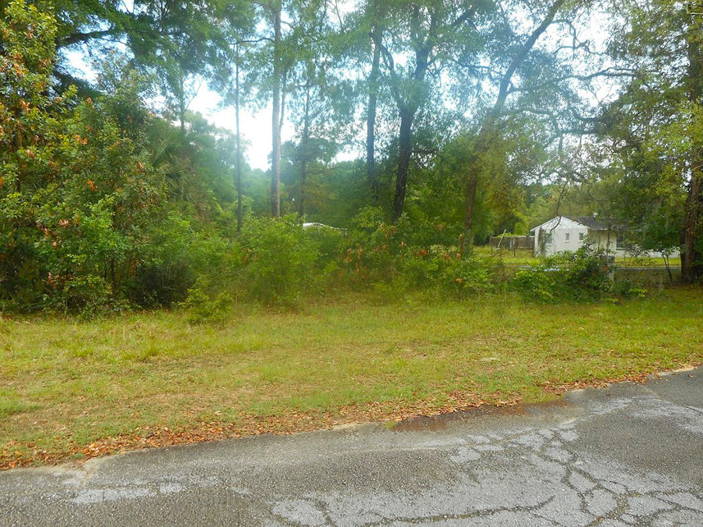 Parcel in Chiefland FL Close to Recreation - Image 4
