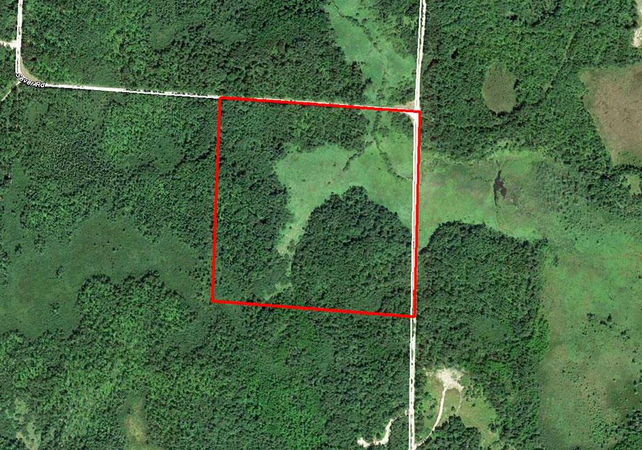 Large Acreage Parcel in Central Minnesota - Image 1