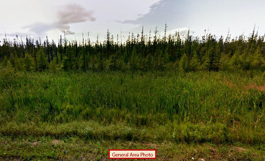 Large Acreage Parcel in Central Minnesota - Image 4