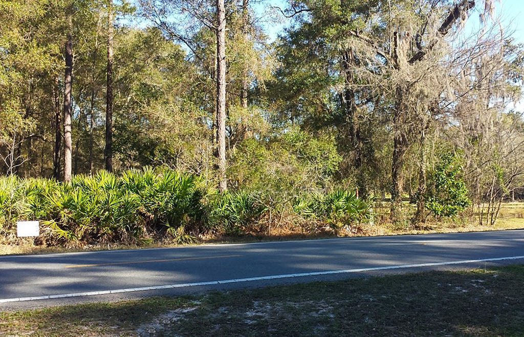Make Summerfield Florida Your New Address - Image 4
