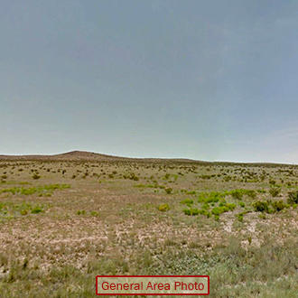 Fifty Remote Acres in Texas - Image 0