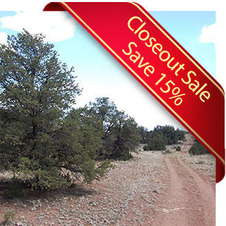 1+ Acre Gem Less than an hour from the Grand Canyon - Image 1